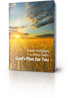 From Holidays to Holy Days: God's Plan for You e-book cover